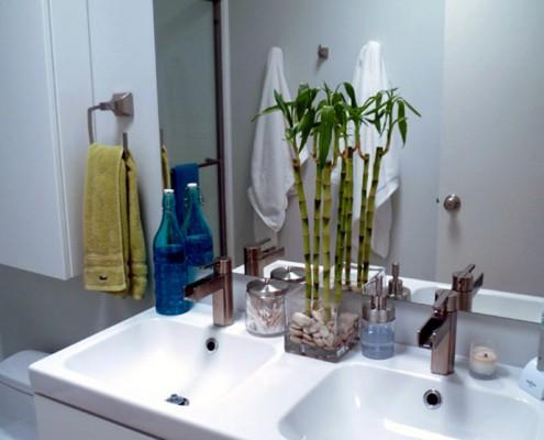 plantas na decoraçao
